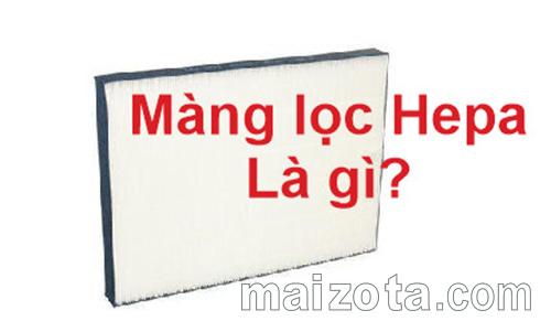 Mang-loc-hepa-la-gi